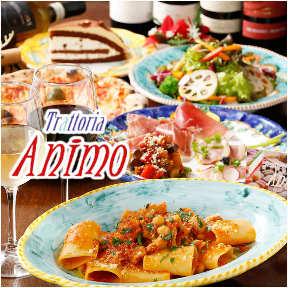 ナポリピッツァと南イタリア料理のお店 アニモ
