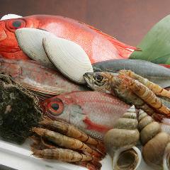 瀬戸内朝採れ鮮魚と酒菜 蒼