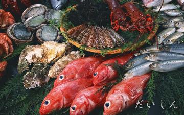 魚のだいしん城陽店