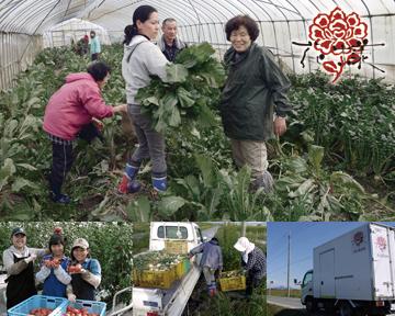 花様 ka-you 京橋京阪モール野菜割烹の自然派和食店