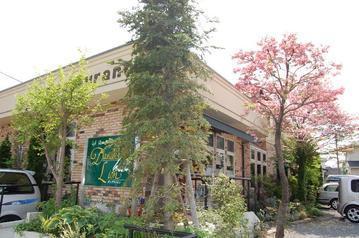 カフェレストラン ダンデライオン
