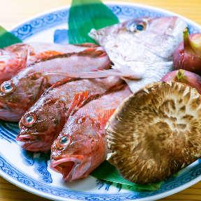 地魚料理 にしか和
