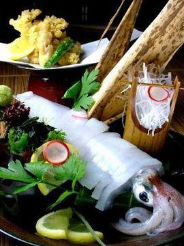九州の地魚料理 侍 赤坂店の店舗情報 - 居酒屋オト …