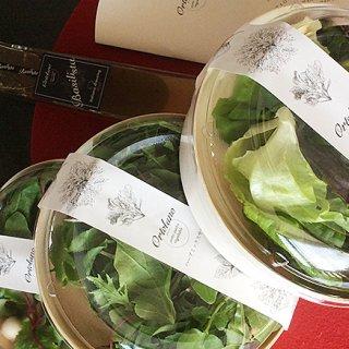 航空機内食のファーストクラスにも採用された味・彩り・香りが自慢のサラダ