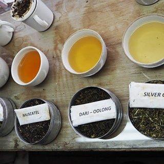 紅茶の種類っていくつ知っている?意外と知らない紅茶の世界