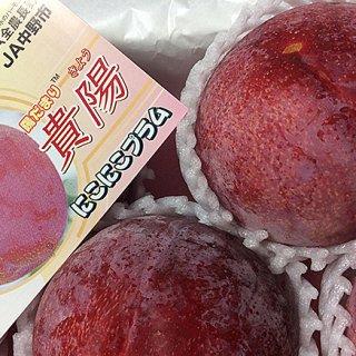 ジューシーで桃のようなほどよい甘味と酸味が絶品!幻のフルーツプラム「貴陽」