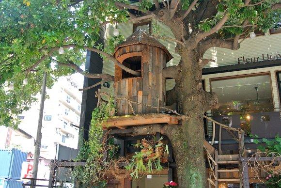 街中にあるツリーハウス
